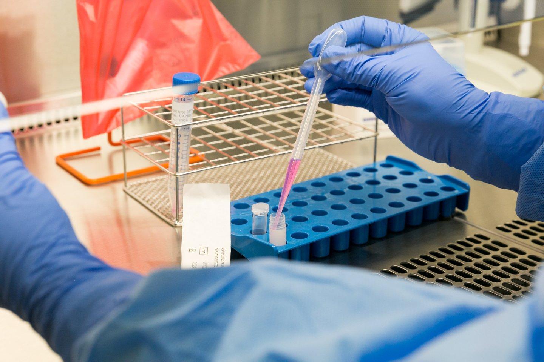 NVSC laboratorijoje darbo gavo ir su verslu siejami asmenys.<br>T.Bauro nuotr.