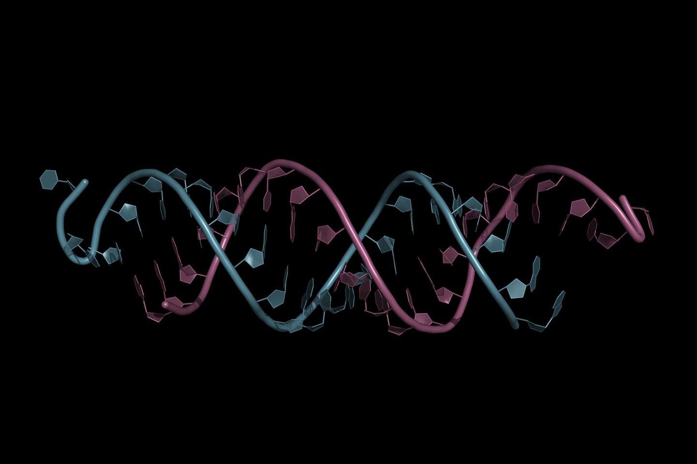 Maždaug prieš tris dešimtmečius mokslininkai suprato, kad laboratorijoje įmanoma susintetinti mRNR.<br>123rf iliustr.