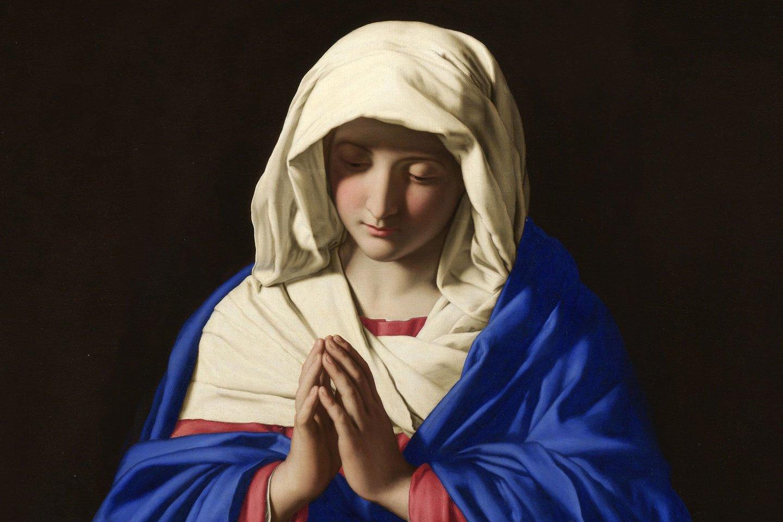 Marijos nekalto prasidėjimo idėja yra tik dalis jos palaipsnio virtimo šventąja: pirma, ji pagimdo nekaltai prasdėtą vaiką, antra, ji pati yra gimusi be nuodėmės, o galiausiai ir vietoje mirties ji paimama į dangų.<br>Giovanni Battista Salvi da Sassoferrato pav.
