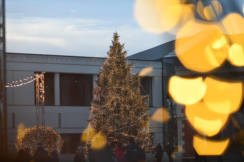"""2021-ųjų išvakarėse Klaipėdoje užges visi papuošimai, Kalėdų eglė ir """"Šiaurinė žvaigždė"""": ribos žmonių patekimą į centrą."""