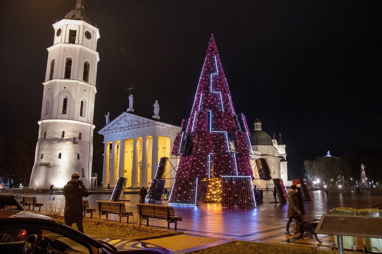 Vilniaus, Kauno, Klaipėdos, ir Šiaulių eglėms šiemet išleista daugiau nei 200 tūkst. eurų.<br>V.Ščiavinsko nuotr.