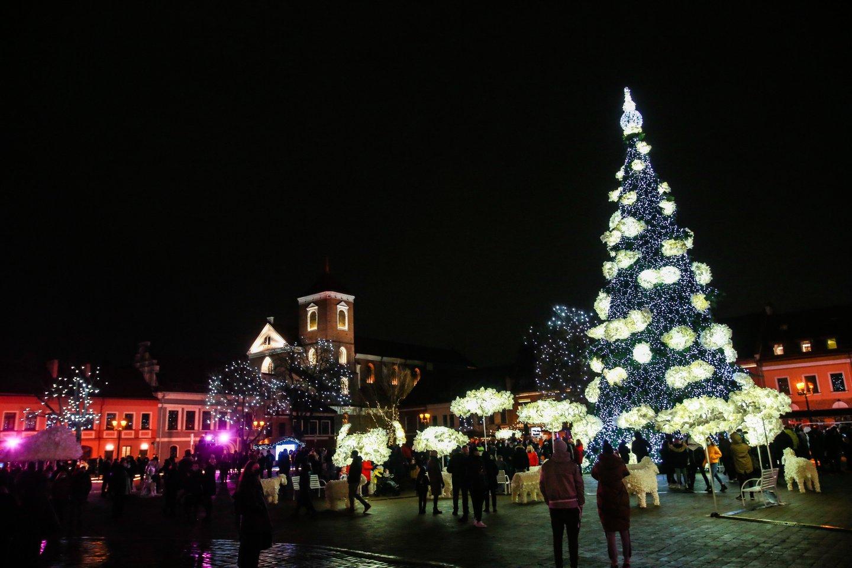 Vilniaus, Kauno, Klaipėdos, ir Šiaulių eglėms šiemet išleista daugiau nei 200 tūkst. eurų.<br>G.Bitvinsko nuotr.