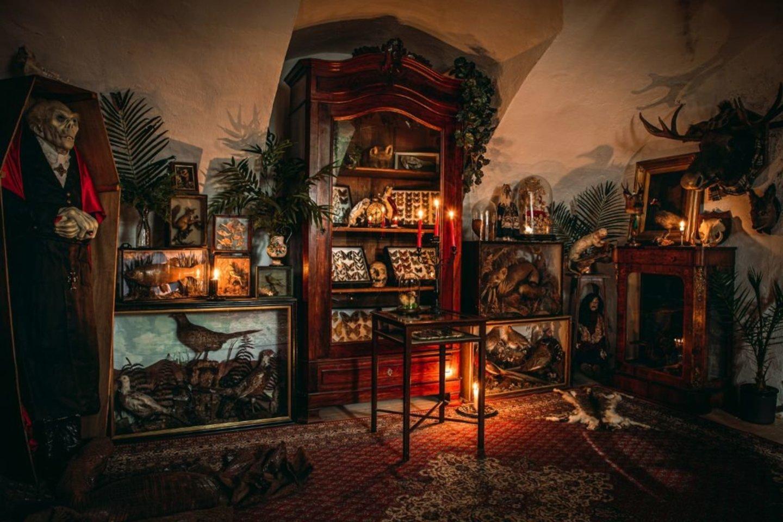 """""""Panoptikumas"""" pristato egzotiškas ir net keistas aristokratų rinktas kolekcijas.<br>Organizatorių nuotr."""