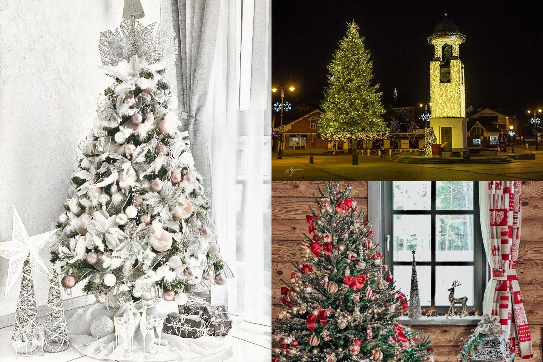 Išrinktos gražiausios ir šventiškiausios kalėdinės miesto ir namų eglutės.<br>lrytas.lt montažas.