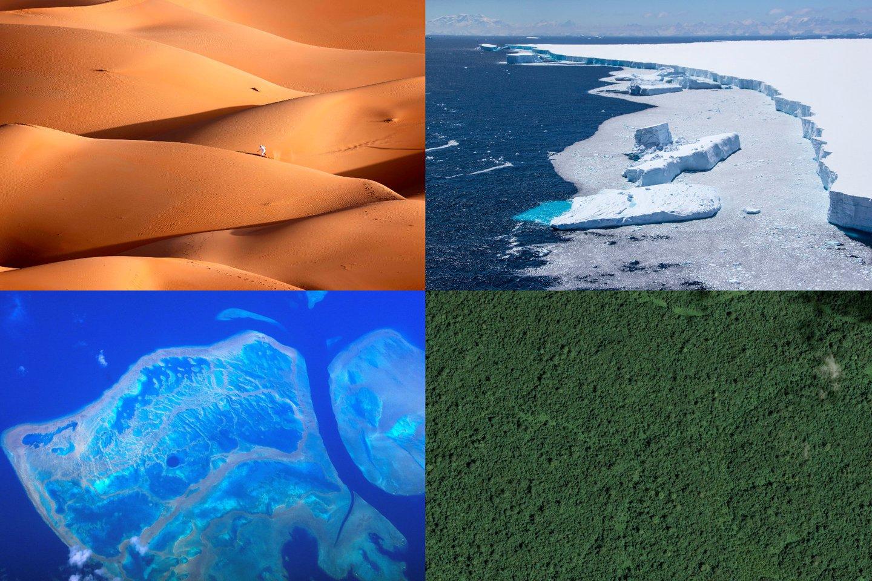"""Virtualiame Vienos planetos aukščiausiojo lygio susitikime (""""One Planet Summit""""), kurį organizavo Prancūzija bendradarbiaudama su JT ir Pasaulio banku, daugiau kaip 50 valstybių parėmė planą pasiekti, kad saugomos teritorijos užimtų 30 proc. planetos sausumos ir vandenynų.<br>Scanpix/Reuters/AFP nuotr."""