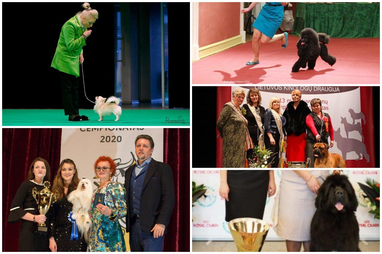 Išrinkti gražiausi Lietuvos šunys ir devyni čempionatai bei jų nugalėtojai.<br>Kinologija.lt archyvo nuotr.