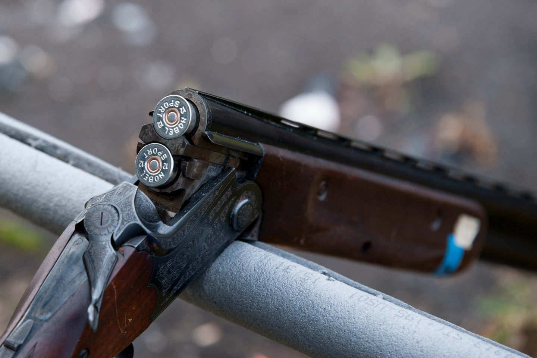 Vyrai gabeno neteisėtai nušautą elnią.<br>V.Ščiavinsko asociatyvi nuotr.