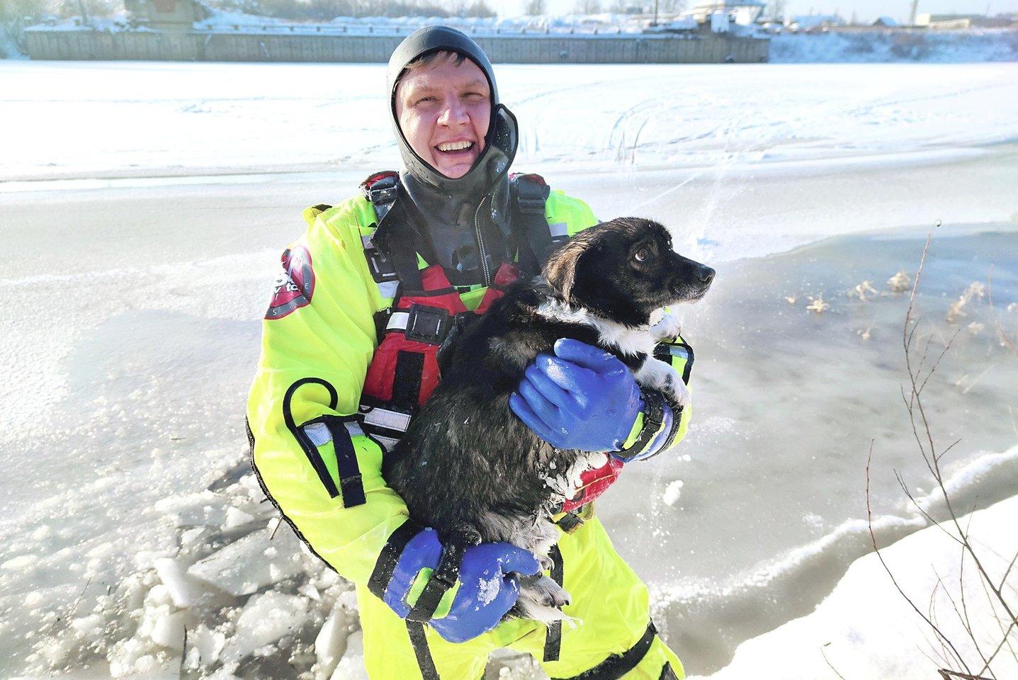 Jurbarko ugniagesiai gelbėtojai beveik valandą užšalusioje prieplaukoje gaudė negalintį į krantą išlipti šunį, kol jis atsidūrė gelbėtojo K.Jokūbaičio glėbyje.
