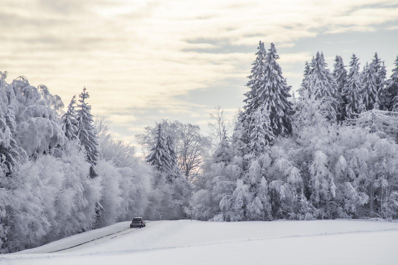 Po Lietuvą užklupusio sniego daug žmonių iki šiol gyvena be elektros.<br>V.Ščiavinsko nuotr.