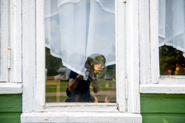 Vila Šventojoje kol kas sulaukia vos vieno kito skambučio, norinčių rezervuoti vietas nedaug.<br>J.Stacevičiaus nuotr.