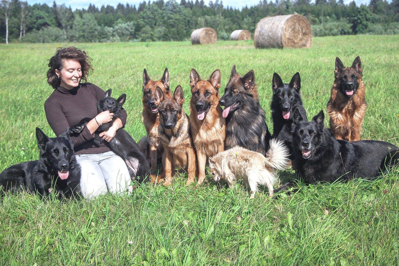 Ž.Čepulienei šunys neleidžia užsisėdėti namie. Veislyno įkūrėja su jais daug laiko praleidžia lauke.<br>Asmeninio archyvo nuotr.