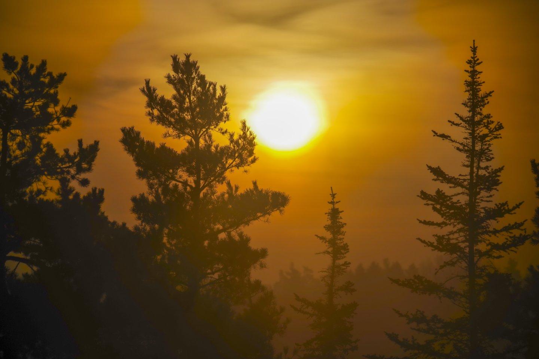 Kalendorinės žiemos pabaiga ne už kalnų.<br>V.Ščiavinsko nuotr.