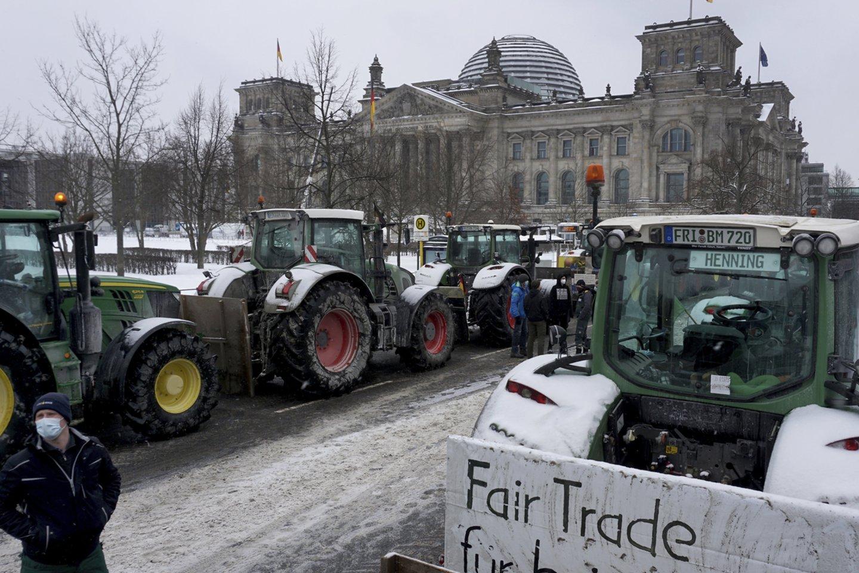Vokietijos vyriausybė trečiadienį turi pristatyti įstatymo projektą sparčiam vabzdžių populiacijų nykimui stabdyti, bet šalies ūkininkai įnirtingai protestuoja prieš šias priemones, jų teigimu, keliančias grėsmę žemdirbių pragyvenimo šaltiniui.<br>AP/Scanpix nuotr.