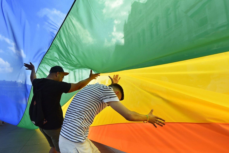 Lietuva yra viena iš šešių Europos Sąjungos valstybių, kurioje tos pačios lyties porų santykiai nėra niekaip reglamentuoti.<br>AFP/Scanpix nuotr.