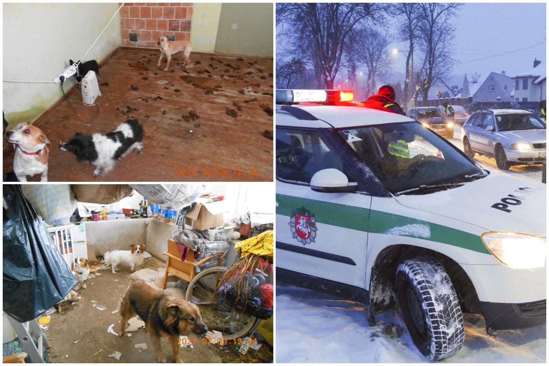 Pareigūnai Pasvalio rajone paėmė per pusšimtį netinkamai laikomų šunų ir kačių.<br>Lrytas.lt koliažias
