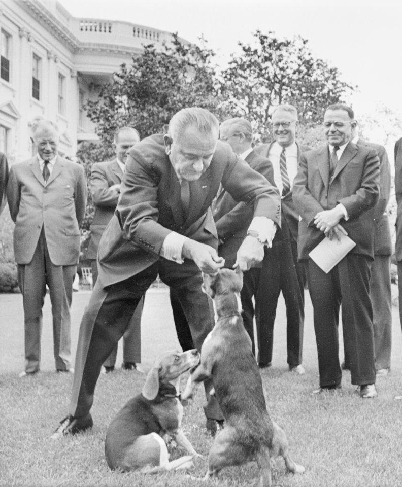 Jau tapęs prezidentu Lyndonas B. Johnsonas Baltuosiuose rūmuose turėjo ne vieną keturkojį draugą: jam kompaniją palaikė ne vienas biglis ir kurtas.<br>AP/Scanpix nuotr.