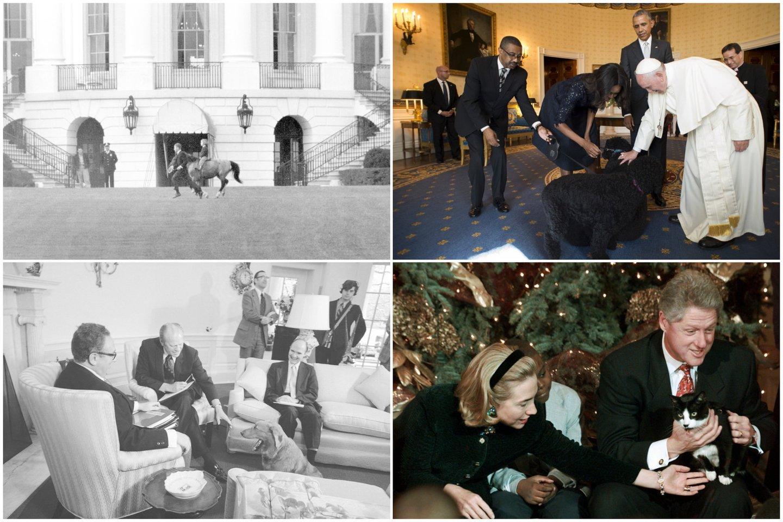 Baltuosiuose rūmuose karaliavo ne tik katės ir šunys: kokie buvo egzotiškiausi prezidentų augintiniai?<br>Lrytas.lt koliažas