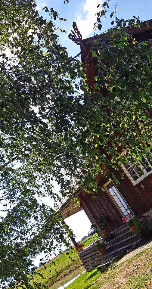 Prienų rajone, Mauručių kaime, gyvenanti Judita pastatą, kuris teturėjo vėjo perpučiamas rąstines sienas ir stogą pavertė gyvenamuoju namu.<br>Asmeninio archyvo nuotr.