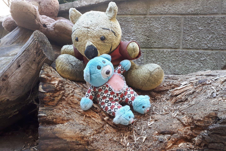 """2019 metų duomenimis 6162 vaikai ir paaugliai skambino į """"Vaikų liniją"""" ir kalbėjosi dėl santykių su tėvais, liūdesio, prislėgtumo, baimės, nerimo ir vienišumo jausmų.<br>A.Vaitkevičiaus nuotr."""