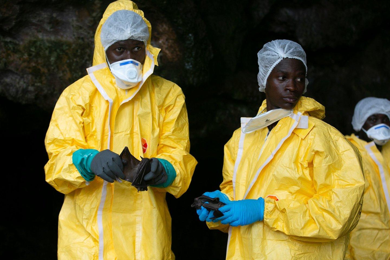 Gvinėjoje Ebolos karštligės protrūkis pirmadienį pareikalavo ketvirtosios aukos, pranešė valstybinė sveikatos apsaugos agentūra.<br>AFP/Scanpix nuotr.