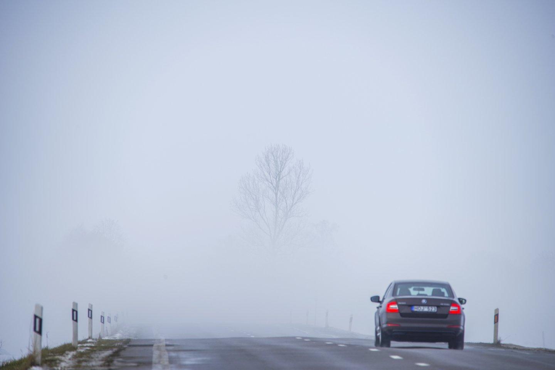 Pirmadienio rytą didžiojoje Lietuvos dalyje eismo sąlygas sunkina susiformavęs plikledis, šarma, slidžių ruožų yra visuose keliuose.<br>V.Ščiavinsko nuotr.