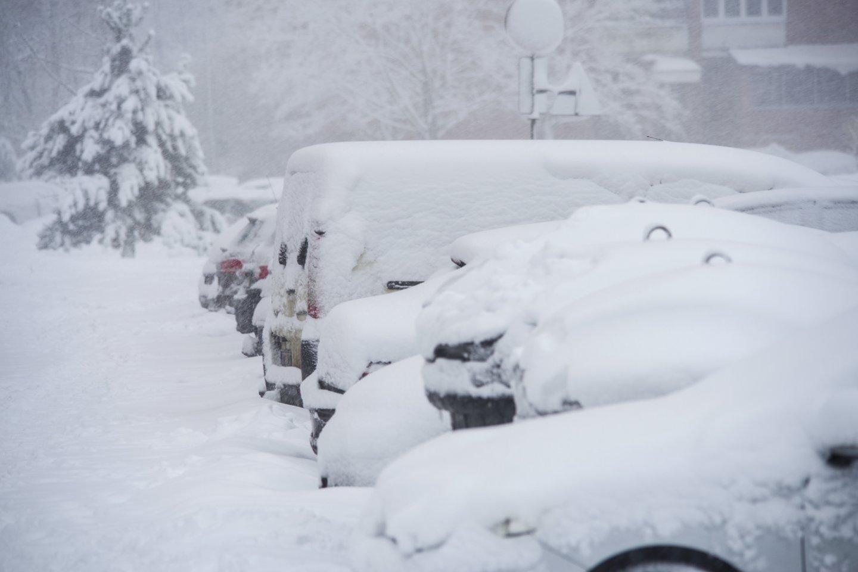 Kas antras (52 proc.) šalies gyventojas, turi nuosavą automobilį.<br>V.Ščiavinsko nuotr.