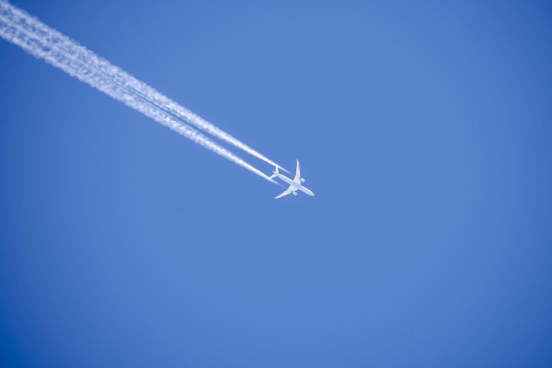 Žiema,sniegas,miškai,lėktuvai,orai<br>V.Ščiavinsko nuotr.