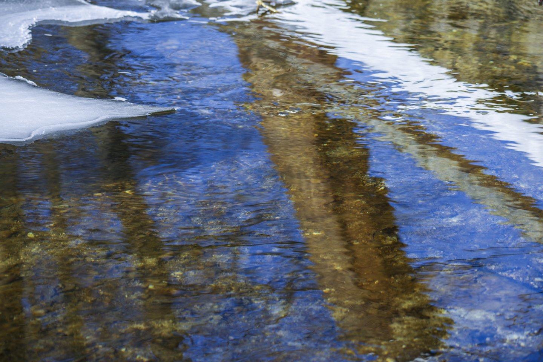Žiema,sniegas,miškai,laukai,orai<br>V.Ščiavinsko nuotr.