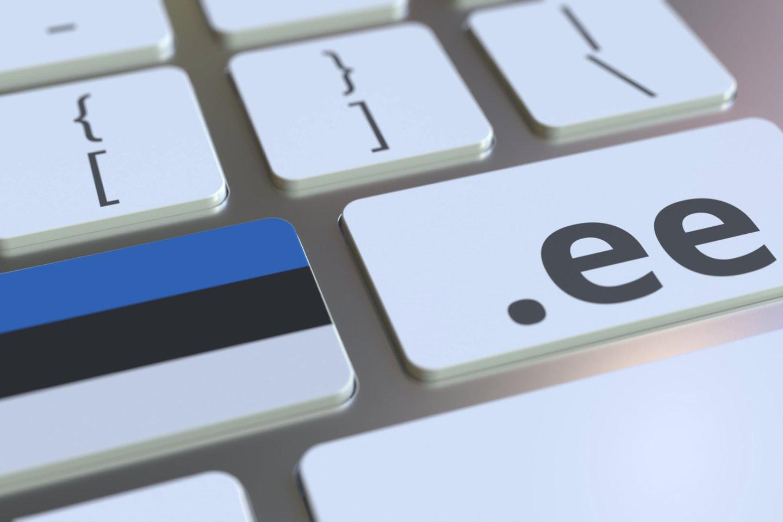 """Naujų .ee domenų Estijoje per praėjusius metus užregistruota 11,5 proc. daugiau nei 2019-aisiais, pranešė įstaiga """"Estijos interneto fondas"""".<br>123rf iliustr."""