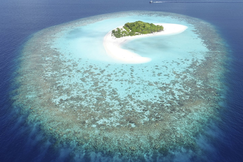 Moteris Maldyvuose pradingo kitą dieną po atvykimo į viešbutį.<br>SWNS/Scanpix nuotr.