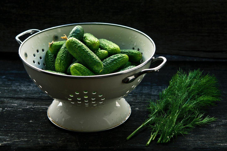 Agurkai – ne tik skanūs, gaivūs, bet ir organizmui naudingos daržovės.<br>Pranešimo autorių nuotr.
