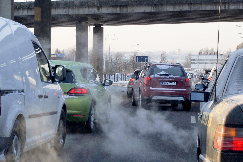 """Simonas Gentvilas pareiškė, kad geriausias """"standartas"""" būtų visuotinis anglies dvideginio emisijos mokestis.<br>V.Ščiavinsko nuotr."""