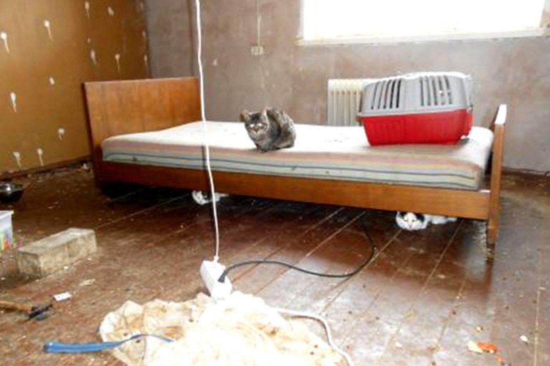 Dvokiančiame būste kartu su savo globotiniais miegojo ir jų šeimininkė, jai, matyt, tas tvaikas netrukdė.<br>Valstybinės maisto ir veterinarijos tarnybos nuotr.