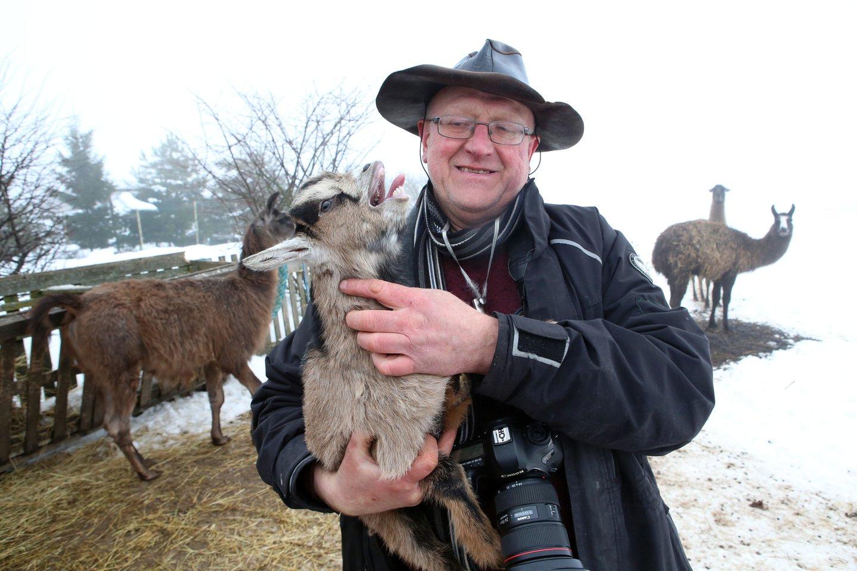 Kamerūno ožiai yra smalsūs ir judrūs gyvūnai.<br>M.Patašiaus nuotr.