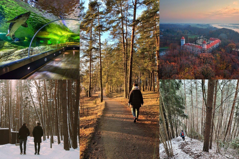 Šiemet laukia dar vienas neįprastas turizmo sezonas, tačiau galimybių atrasti savo šalį tikrai bus.<br>Lrytas.lt fotomontažas