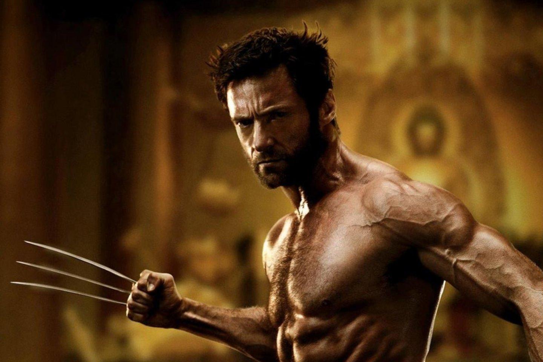 """""""Google"""" vysto projektą """"Wolverine"""", pavadintą komiksų ir filmų """"X-Men"""" superherojaus vardu."""