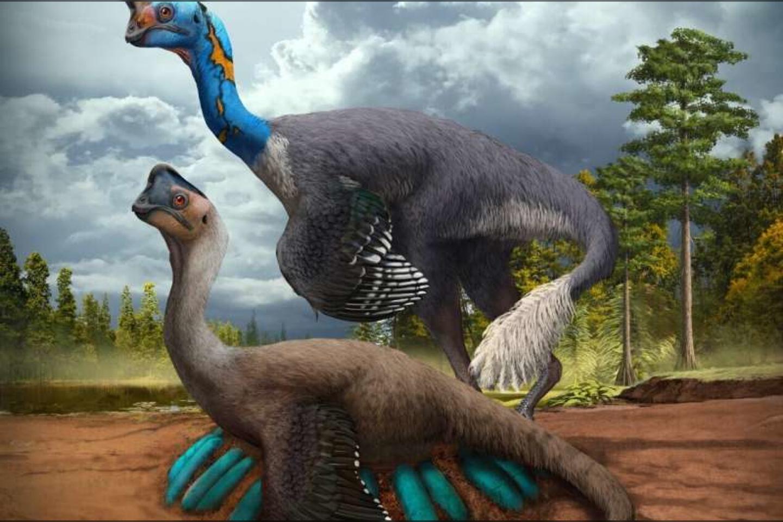 """Aptiktas unikalus paleontologinis radinys – """"nepanašu į nieką, ką yra  pavykę rasti anksčiau"""""""