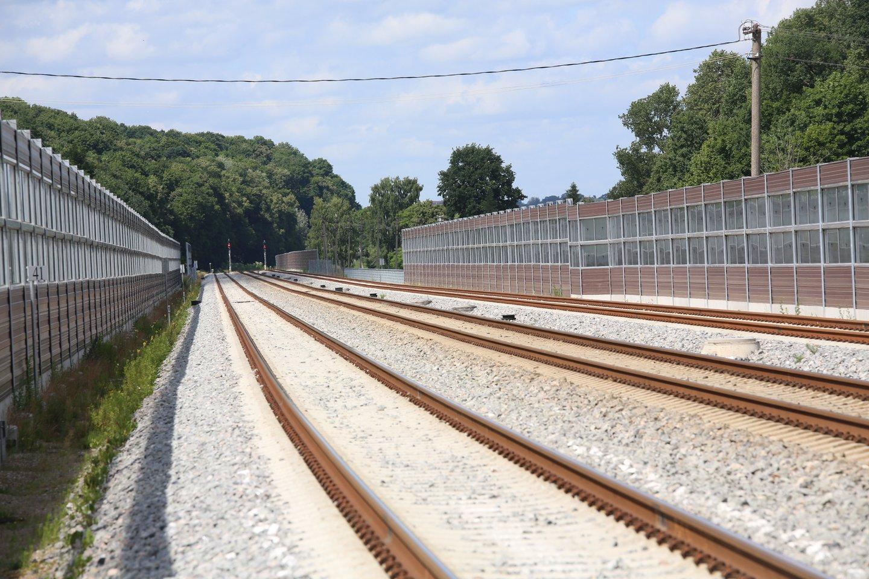 """Ambasadorius: """"Rail Baltica"""" išsaugojo galimybę gauti išskirtinį ES finansavimą.<br>M.Patašiaus nuotr."""