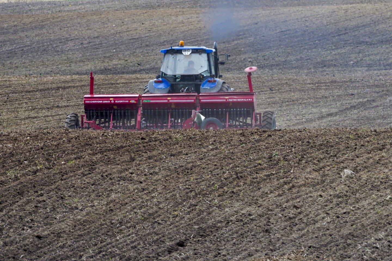 Žemės ūkio ministerijos siūlo pratęsti šiuo metu įgyvendinamos valstybės pagalbos priemonės galiojimą, užtikrinant draudimo nuo stichinės sausros rizikos prieinamumą.<br>V.Ščiavinsko nuotr.