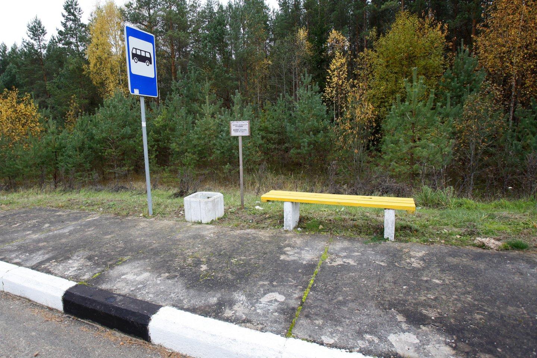 Opozicija paprašė skirti lėšų biudžete ir pastatyti stoteles moksleiviams laukti mokyklos autobuso.<br>V.Balkūno nuotr.