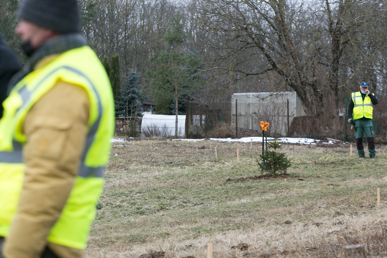 Sodinti Kalėdų mišką panoro visas būrys vilniečių.<br>T.Bauro nuotr.