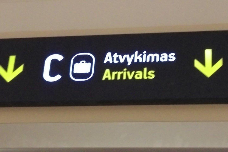 Vilniaus ir Kauno oro uostuose sulaikyti du teisėsaugos ieškoti lietuviai.<br>VSAT nuotr.