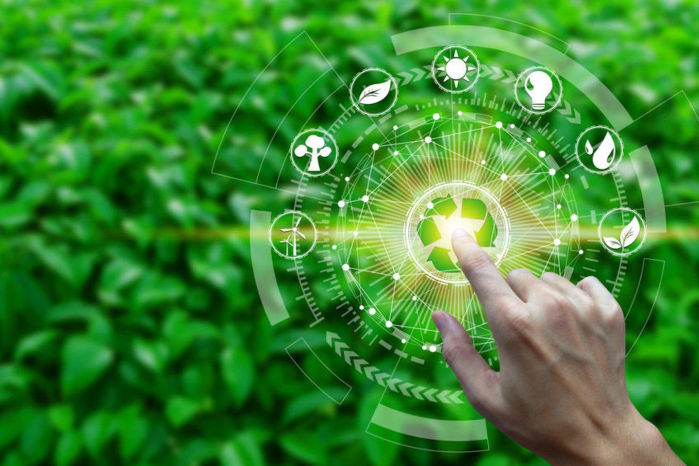 Didinti ekologinio ūkininkavimo indėlį į aplinkos tvarumą, skatinti perėjimą ir sustiprinti visą vertės grandinę, taip pat skatinti paklausą ir užtikrinti vartotojų pasitikėjimą – tokie pagrindiniai Europos Komisijos (EK) parengto Ekologinių veiksmų plano uždaviniai visai Europos Sąjungai (ES).<br>123rf