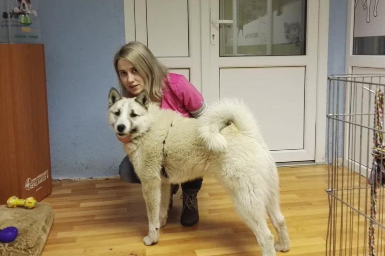 """Gyvūnų gerovės tarnybos """"Pifas"""" gyvūnų priežiūros ir globos koordinatorė Kėdainiuose Greta Linkė apžvelgė praėjusius metus. Specialistė atvira – metai buvo labai sunkūs.<br>Asmeninio archyvo nuotr."""