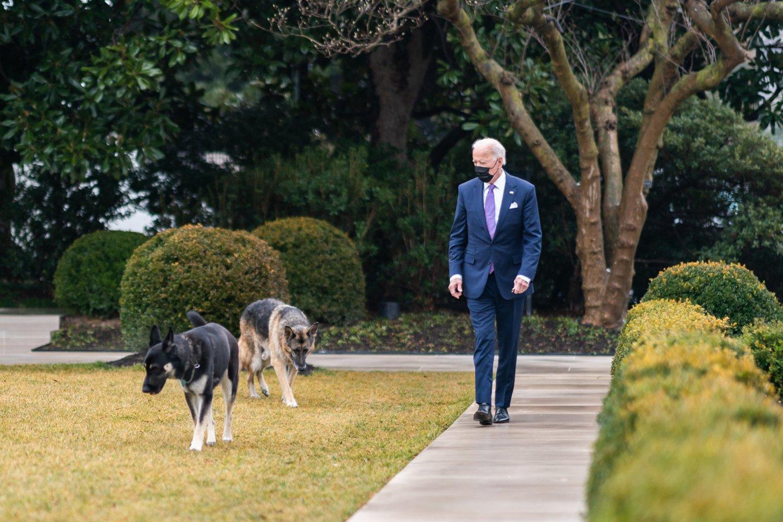 J. Bideno šuo vėl užpuolė žmogų.<br>ZUMA Press/Scanpix nuotr.