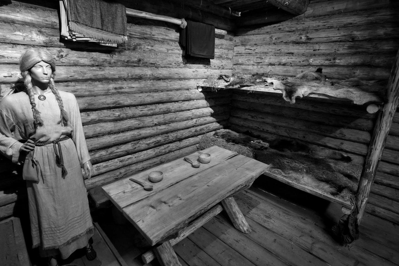 XIII-XIV a. lietuvių pilies kambario rekonstrukcija Šeimyniškėlių piliakalnyje.<br>A. Rutkausko nuotr.