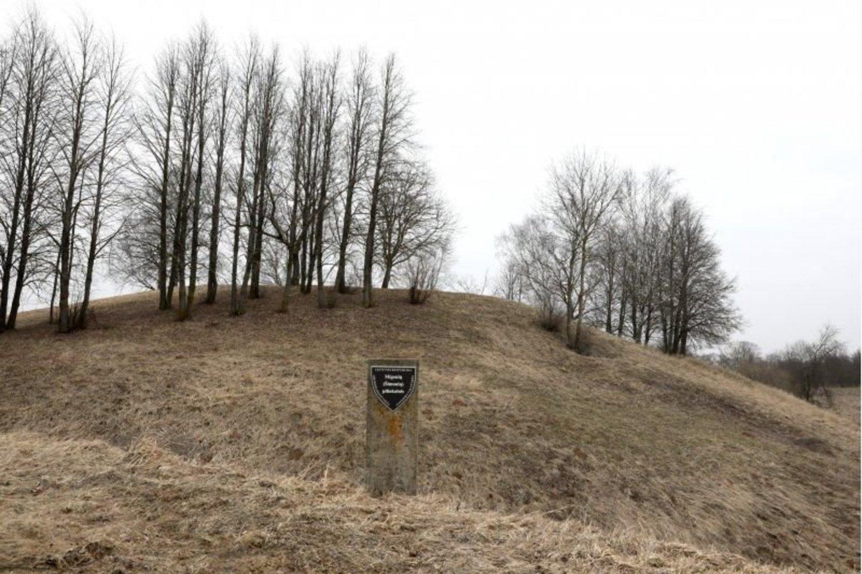 Šimonių-Migonių piliakalnis kasmet žemėja.<br>A.Švelnos nuotr.