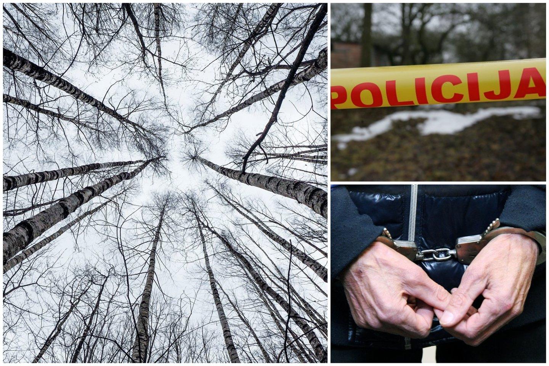 Ukmergės r. nužudyta mergina, įtariamasis sulaikytas.<br>Lrytas.lt fotokoliažas