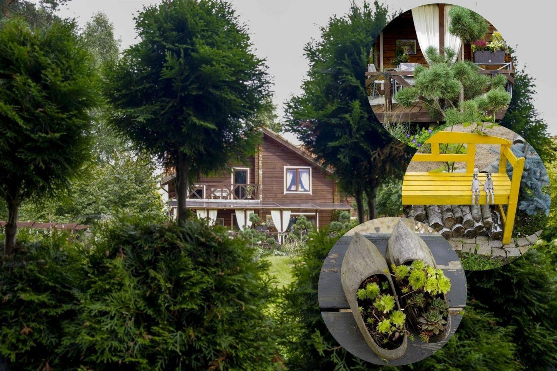Praėjusiais metais daugiausiai balsų surinko Jurgitos Sėjūnaitės prižiūrimos valdos – kone 30 arų šalia Trakų, kur stovi jos gausios šeimynos namai.