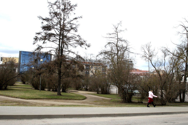 Valdančiųjų palaimintą naujos Panevėžio autobusų stoties projektą opozicija pakrikštijo gėdos paminklu politikų savanaudiškumui.<br>A.Švelnos nuotr.
